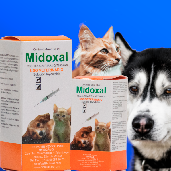 Midoxal solucion inyectable